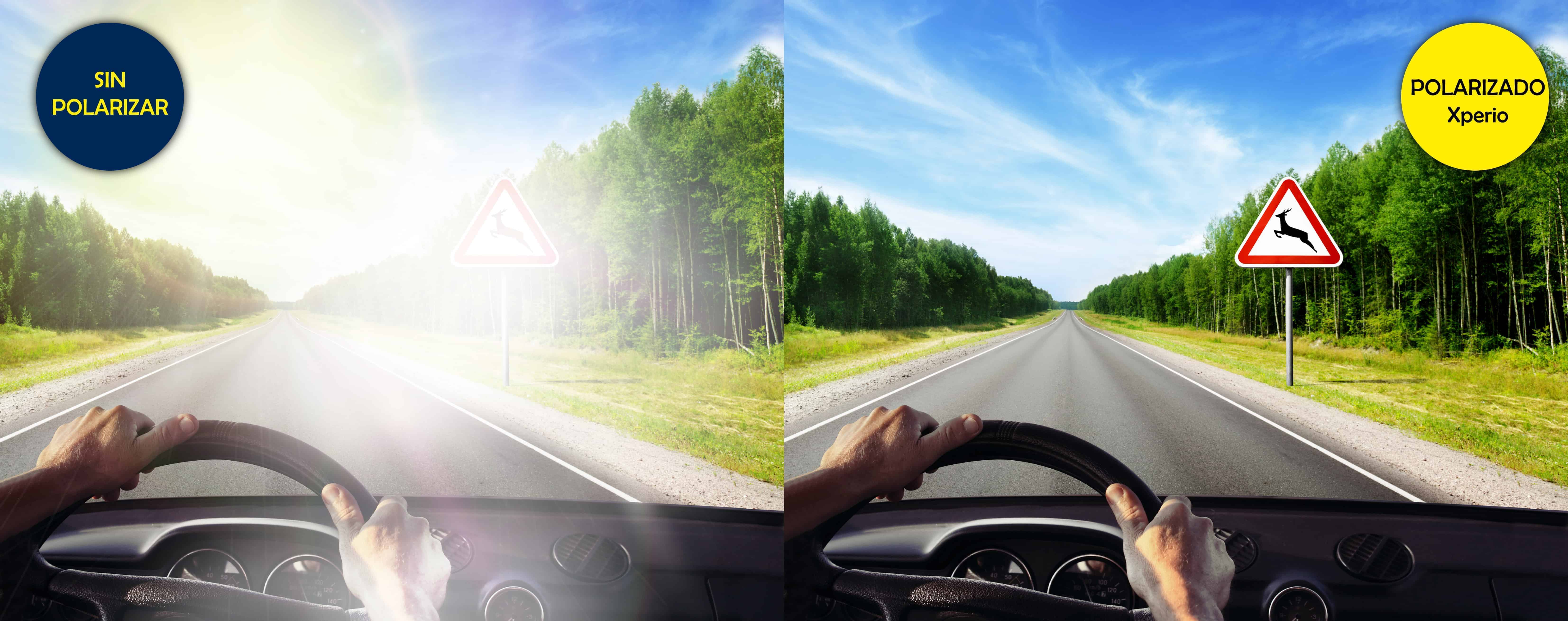b197b9f21 ¿Cuáles son las mejores gafas de sol para conducir? - Óptica Andorrana